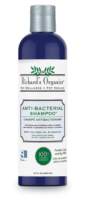 Anti-bacterial Shampoo