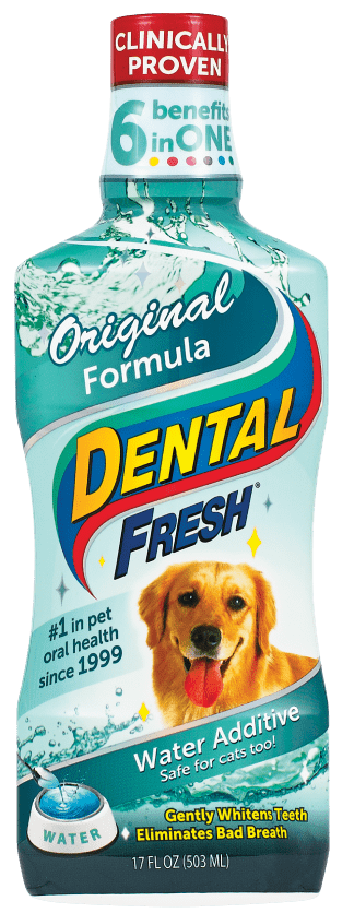 Dental Fresh - Product